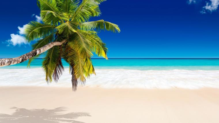 Caribbean Backgrounds