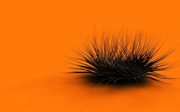 Latest Cool Animated Orange Wallpapers MyClipta