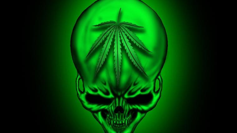 Trippy Weed Wallpapers Hd   WeedPad Wallpapers