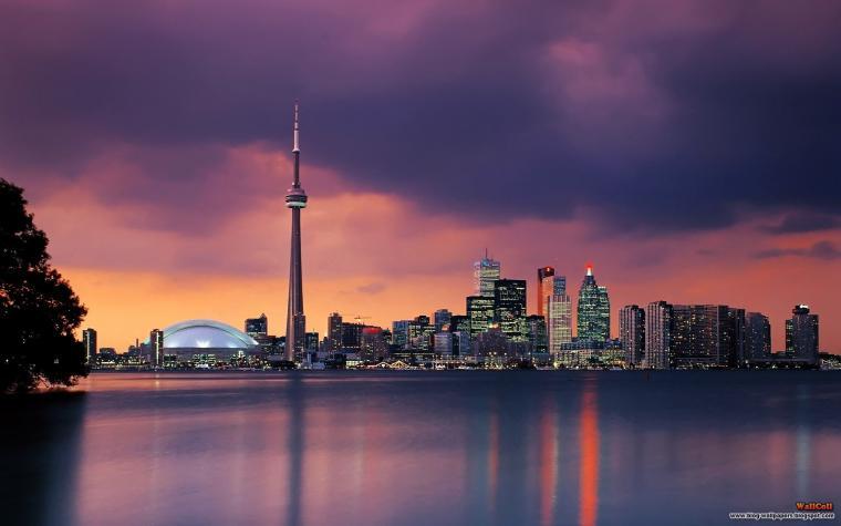 Skylines Night Toronto Cities Night City Fresh New Hd Wallpaper