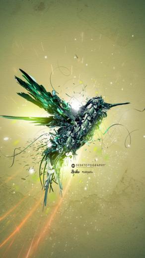Humming bird Galaxy S3 Wallpaper 720x1280