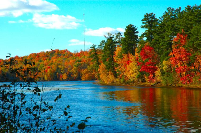 Computer wallpaper cool wallpaper Fall on the Wolf River Wisconsin