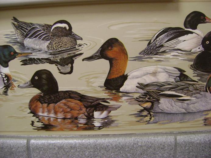 Bird Themed Wallpaper