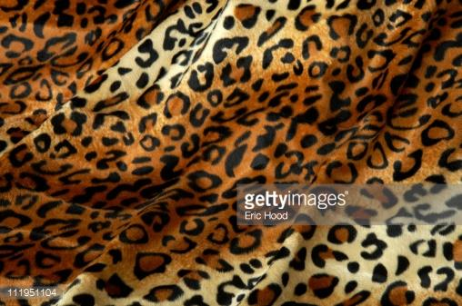 Leopard Print Fabric Faux Fur Background Stock Photo Getty Images