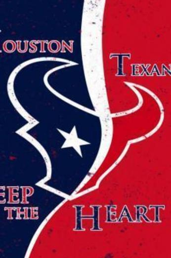 Houston Texans Game of Thrones Style Wallpaper for iPhone 4