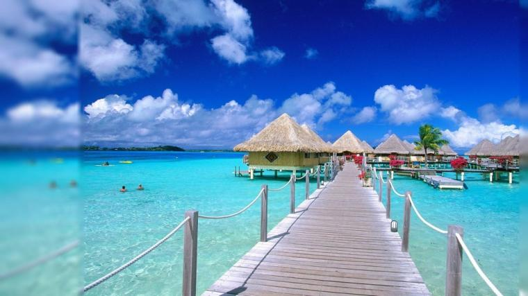beach resort with this stellar animated beach wallpaper Download it