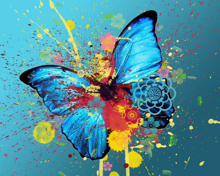 Description Butterfly Wallpaper HD is a hi res Wallpaper for pc