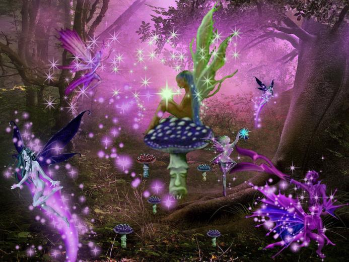 Enchanted Fairy Forest by tgirlshayna