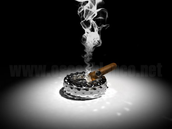 Cigar Wallpaper Cigar and smoke 3d render by