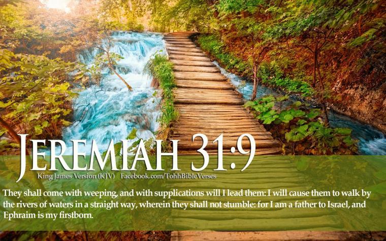 Download HD Christmas Bible Verse Greetings Card Wallpapers
