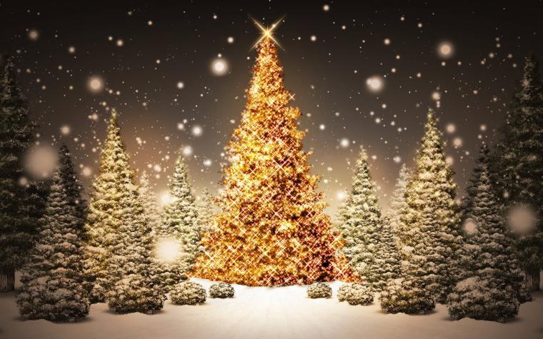 Tree Wallpapers 3d Christmas Tree Backgrounds Desktop