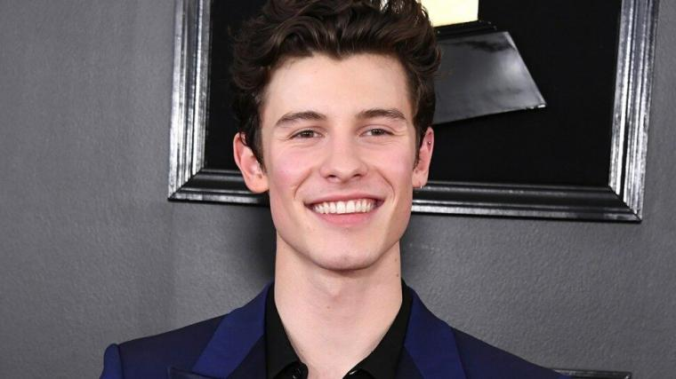 Shawn Mendes Poses in His Underwear for New Calvin Klein Modeling