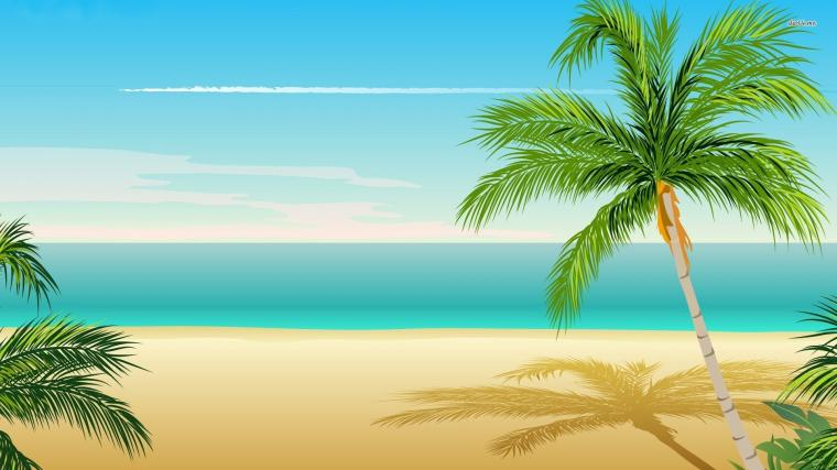 Palm Tree Wallpapers HD Pictures Live HD Wallpaper HQ