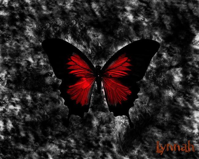 Gothic Dark Wallpapers   Download Dark Gothic Backgrounds