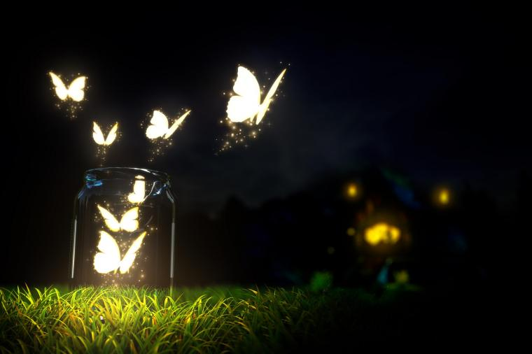 Glowing Butterfly Wallpapers HD Desktop and Mobile Backgrounds