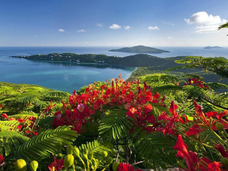 Caribbean Islands Beautiful View Exotic Holiday Wallpaper