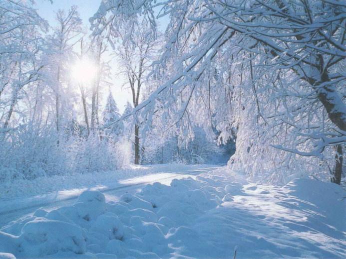 beautiful nature winter wallpaper Wallpaper Express is