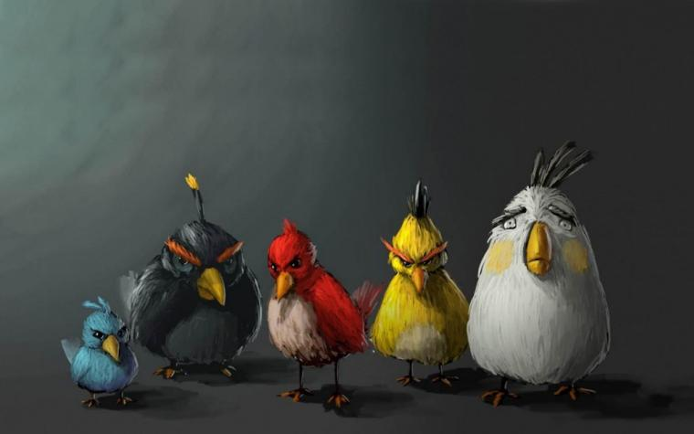 memes wallpaper hd angry birds wallpaper 1440x900 wallpaperhere