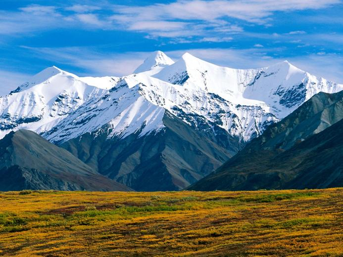 Denali National Park Alaska Wallpapers HD Wallpapers