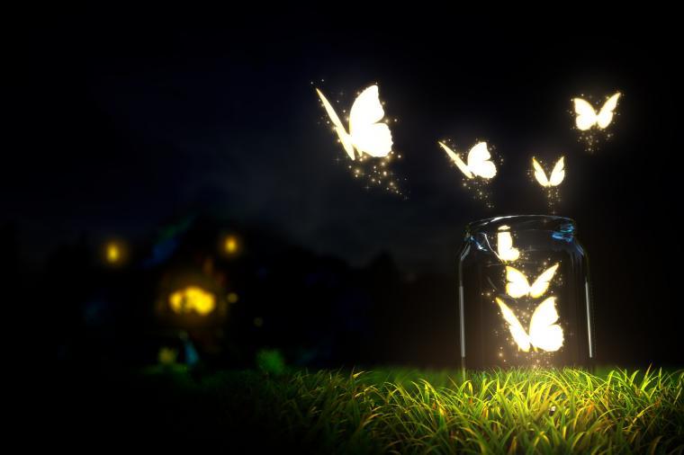 Glowing butterflies lighting in the dark   HD wallpaper