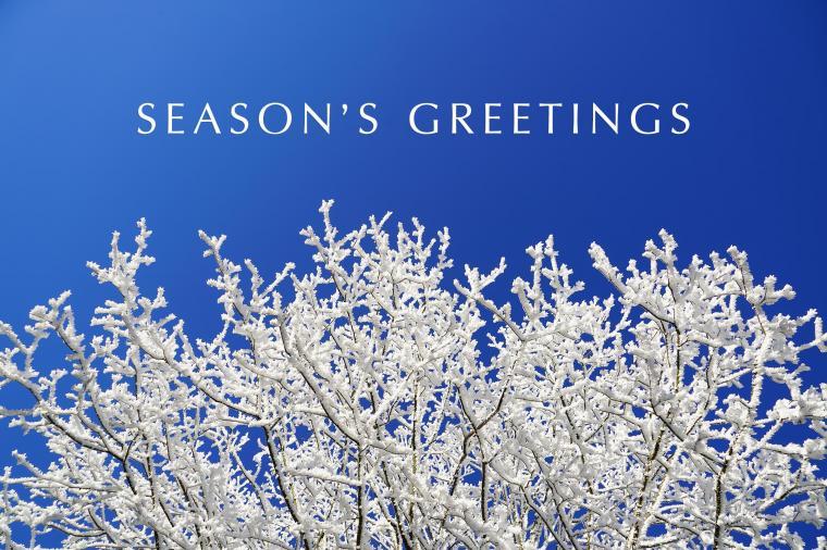 download 15 Seasons Greetings Cards Stock Images HD