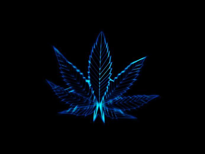 Pot leaves marijuana drugs wallpaper 1600x1200 37369 WallpaperUP