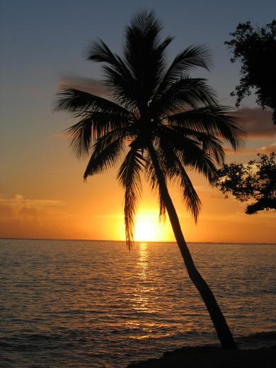 Caribbean Sunset Desktop Backgrounds for HD Wallpaper wall