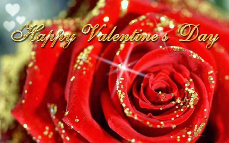 Wallpapers and Images Valentine day wallpaper downloads
