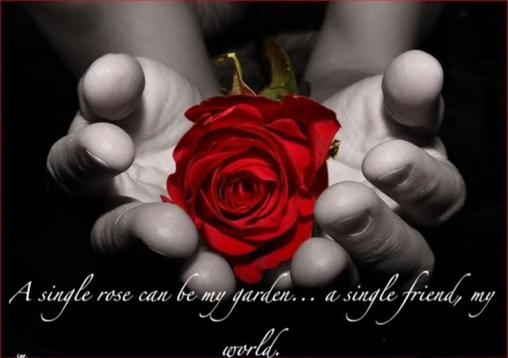 love you my friends wallpaper   ForWallpapercom