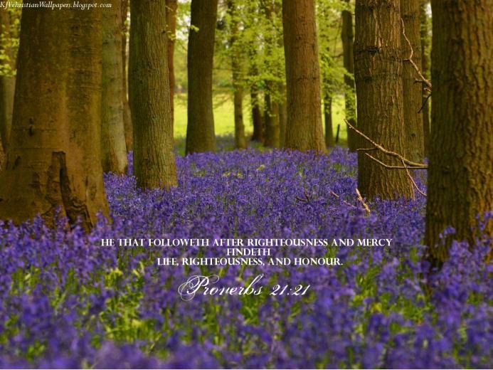 King James KJB versed Christian Wallpaper Proverbs 2121