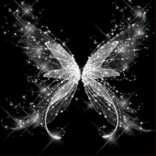 Amazoncom 5D Diamond Painting Rhinestone Crystal Butterfly Dream