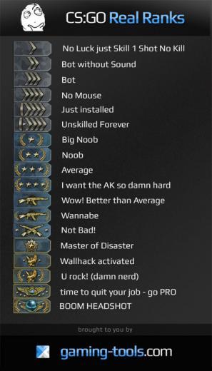 Rank Names cs go Real cs go ranks