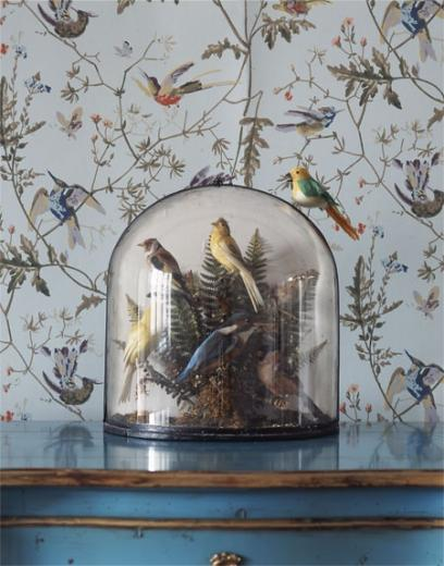 Cole Son Hummingbirds wallpaper Wall Inspiration Pinterest
