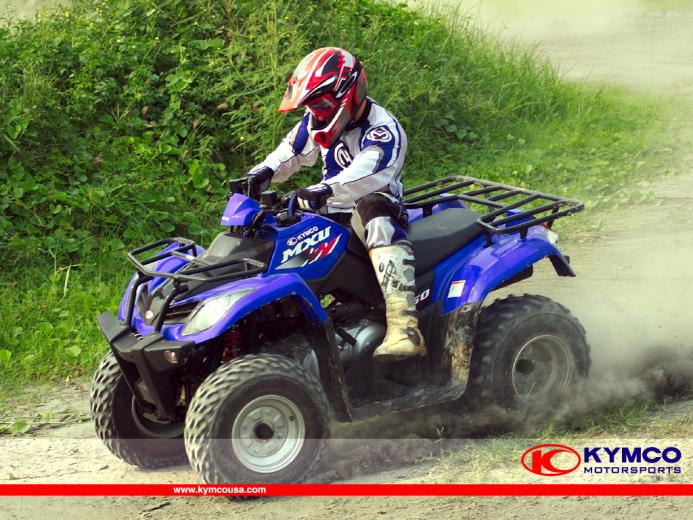 cool atv Page 4