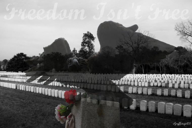 Freedom Isnt by Gryffingirl77