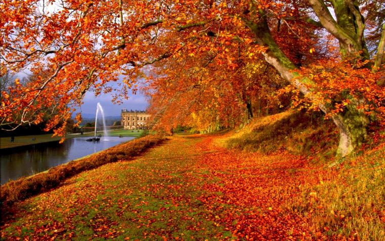 Fall Scenes Wallpaper and Screensavers 58 images