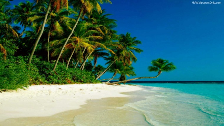 levu beach sunset wallpaper hd Download levu beach sunset wallpaper hd