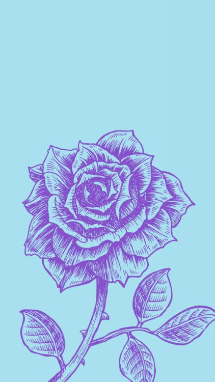 rose wallpaper on Tumblr