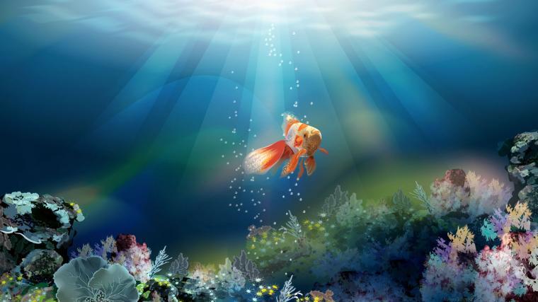 Related Wallpaper for Fish Wallpaper 3D Desktop
