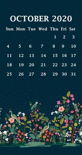 iPhone 2020 Calendar Wallpaper Calendar 2020