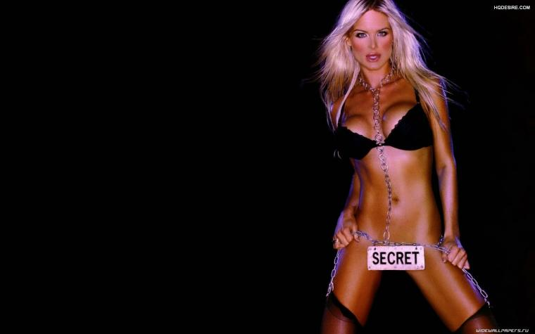 Victoria Silvstedt Supermodel Wallpaper  Do you know how to get