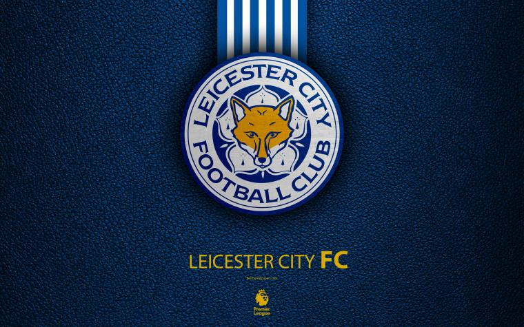 Free download Wall Murals real fox leicester city football ...