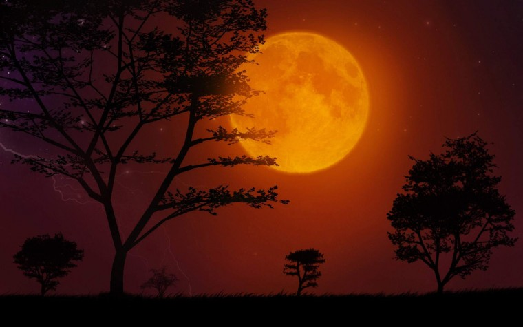 Download Super Moon HD Wallpaper 5259 Full Size