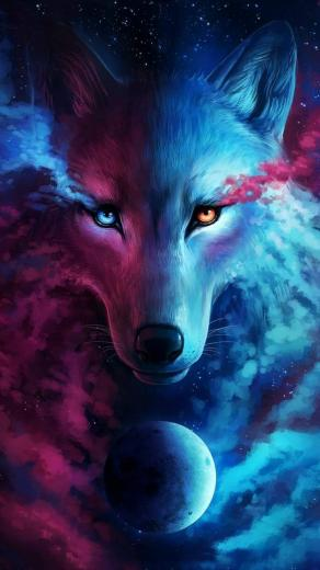 Pin by Evens Jane on Nature Wolf Wolf hoodie Galaxy wolf