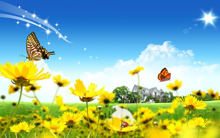 Spring on the filed wallpaper   754234