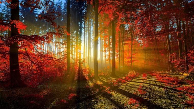 Beautiful Nature Hd Wallpapers Download 15862 Wallpaper
