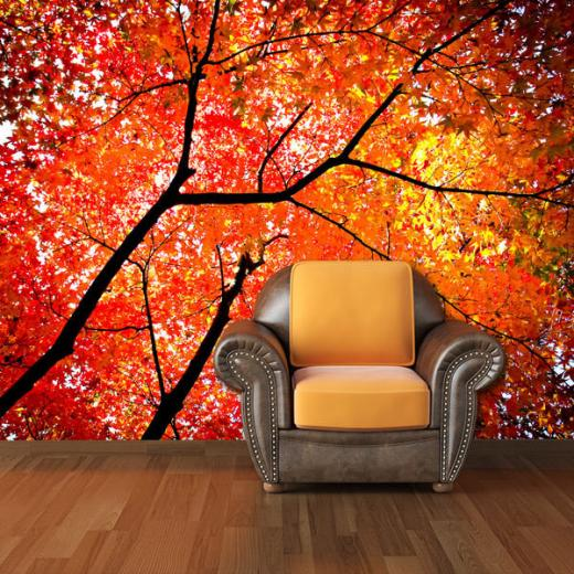 Printed Photo Wall Mural Removable Wallpaper Home Decor fall tree