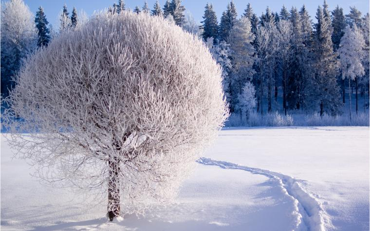 Most Beautiful Winter Wallpapers Full HD Pictures