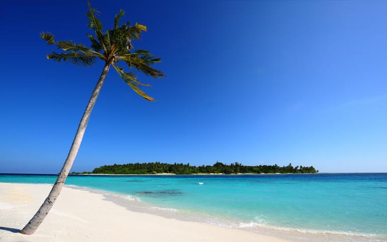2560 x 1600 2288 kB jpeg Desktop Backgrounds Beach Scenes
