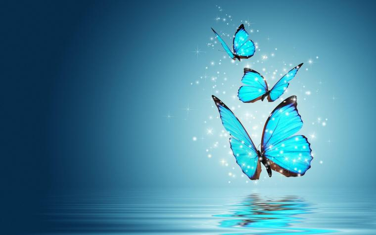 7538 blue butterfly hd wallpaper